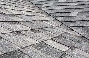 Roofing Company Loveland CO