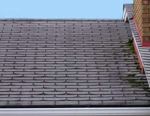 Roofing Company Denver CO
